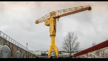 of-grue-jaune