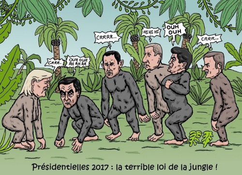 presidentielle-loi-de-la-jungle